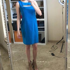 Blue work dress with subtle leopard print